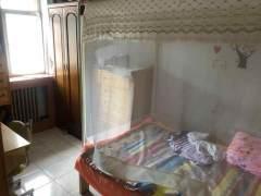 (市中)文化西里3室1厅1卫80m²简单装修